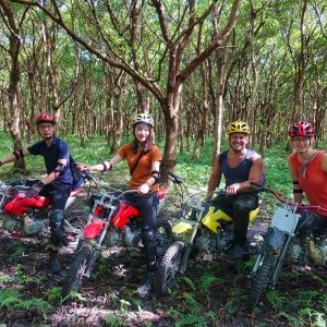 Totoro forest is a man made forest which allows you to ride the motocross freely because few people come here.